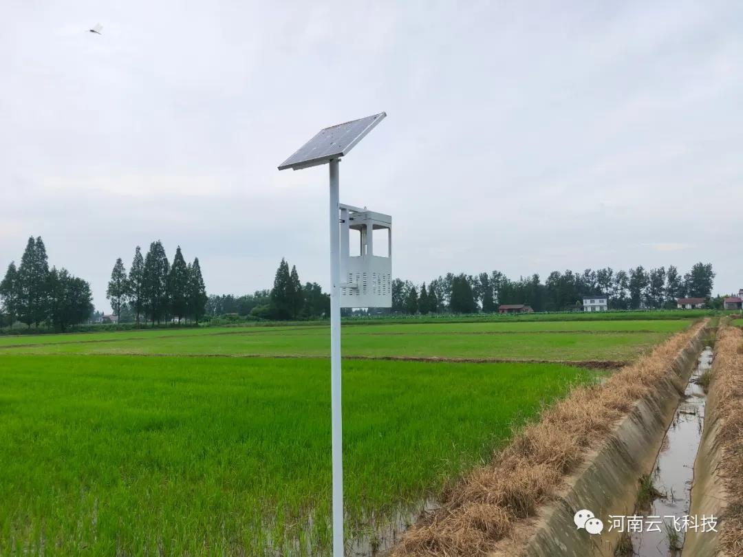 风吸式太阳能杀虫灯成为新型杀虫方